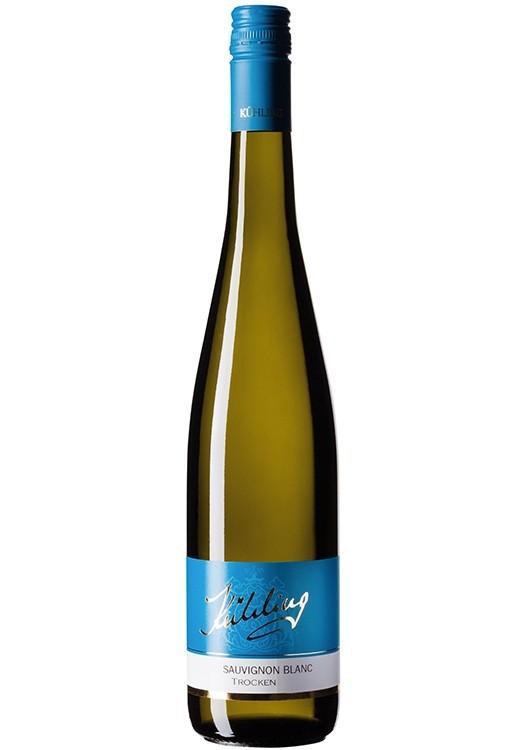 2018 Sauvignon blanc BIO trocken
