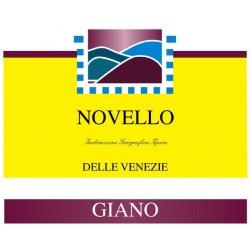 2019 Vino Novello IGT