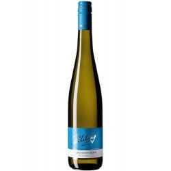 2020 Sauvignon blanc BIO trocken