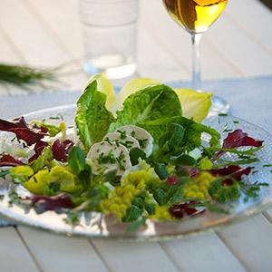 Blattsalate mit gratiniertem Ziegenkäse